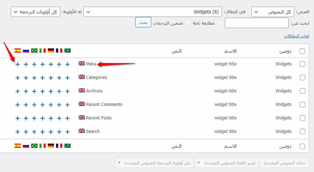 نصوص بواسطة ملحق WPML String Translation