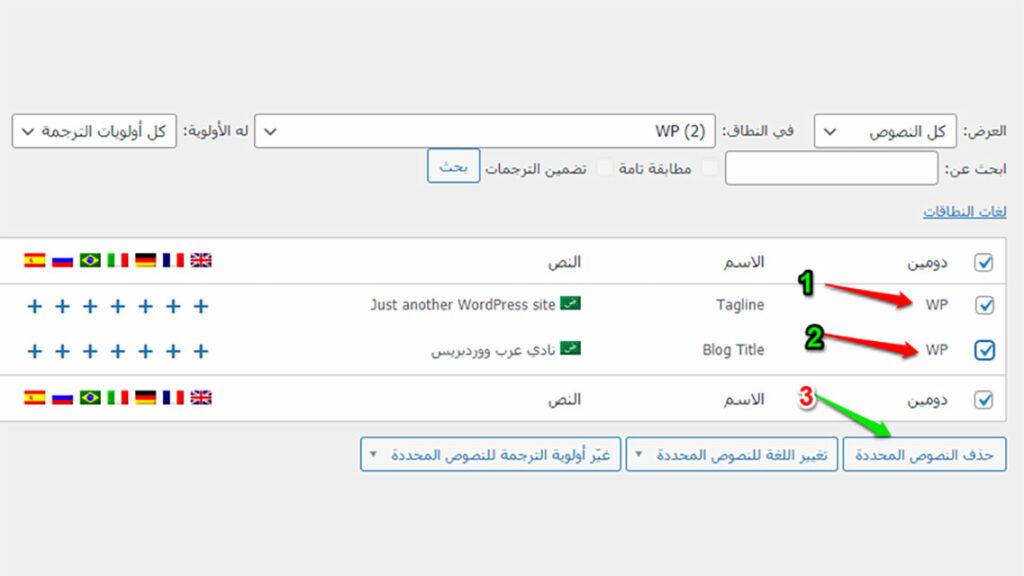 النصوص من WPML String Translation